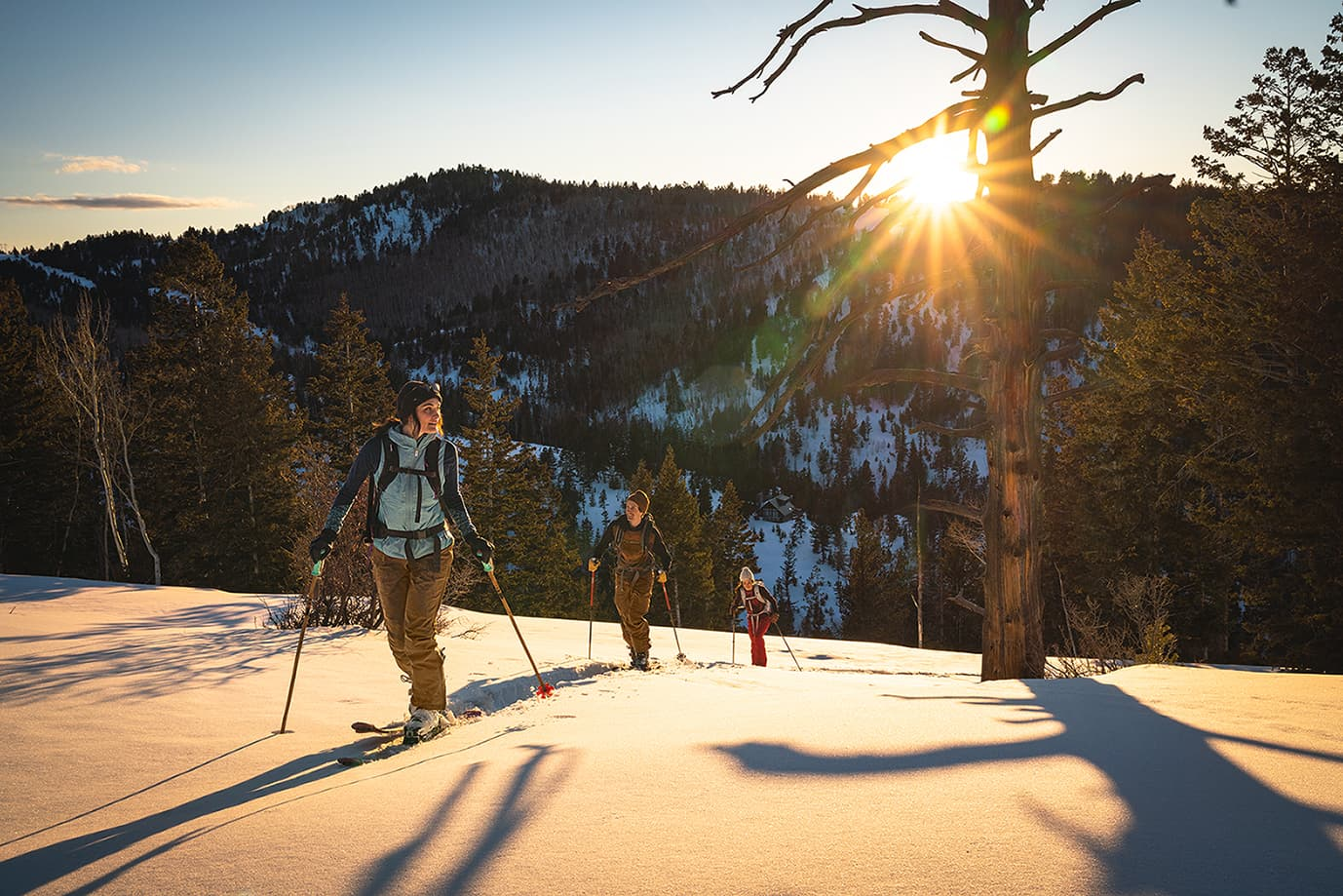ski touring in the sub-alpine at day break