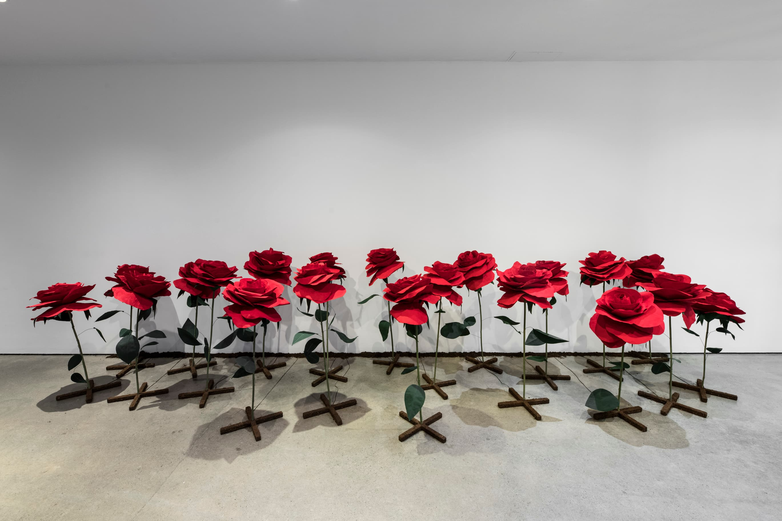 Installation view of Rita McKeoughs exhibition with red roses
