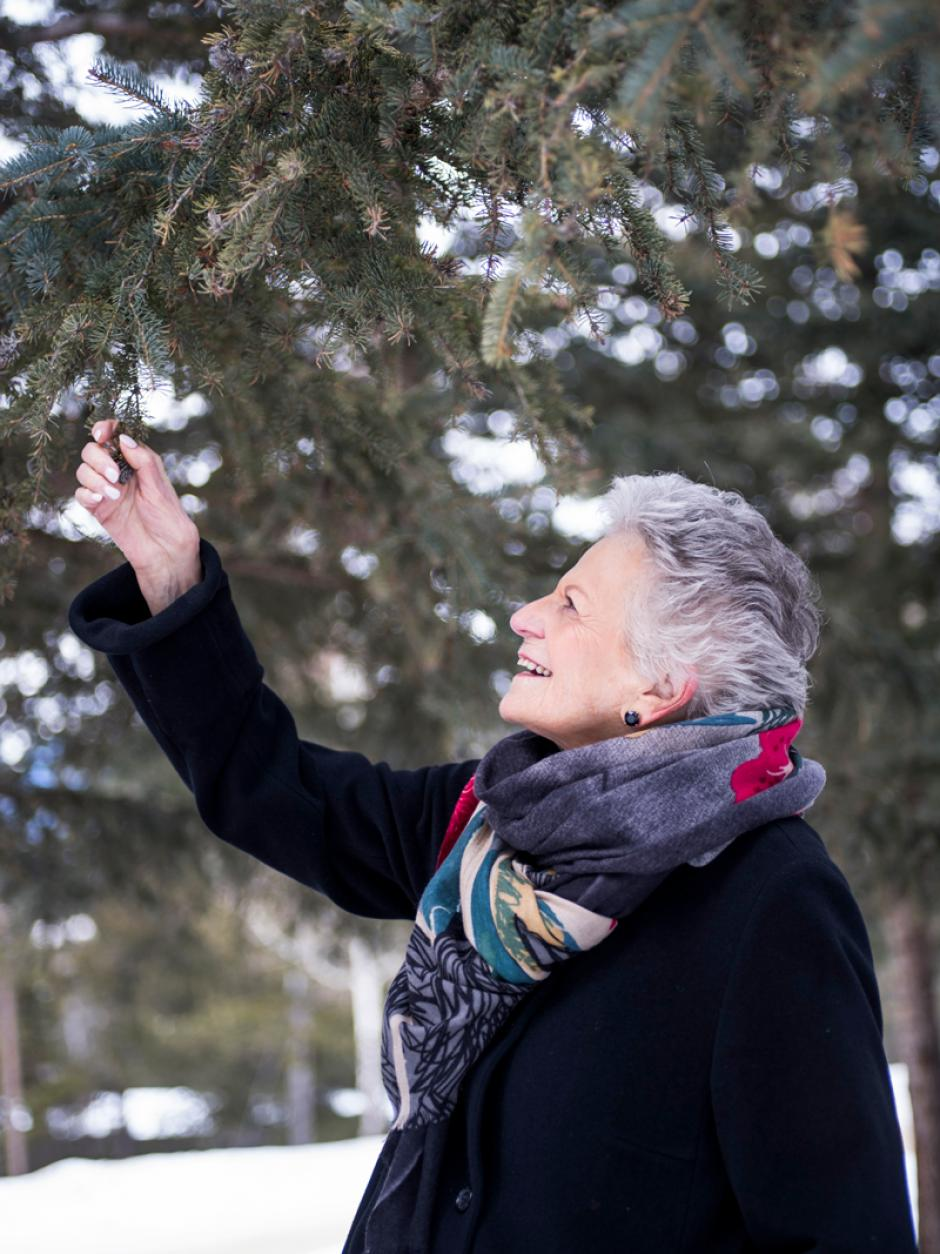 Banff Centre donor grabbing a pine tree.