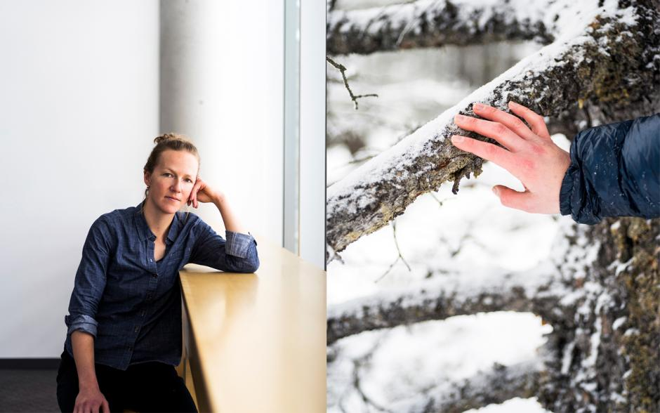 Images of Kate Harris sitting inside and outside brushing a tree.