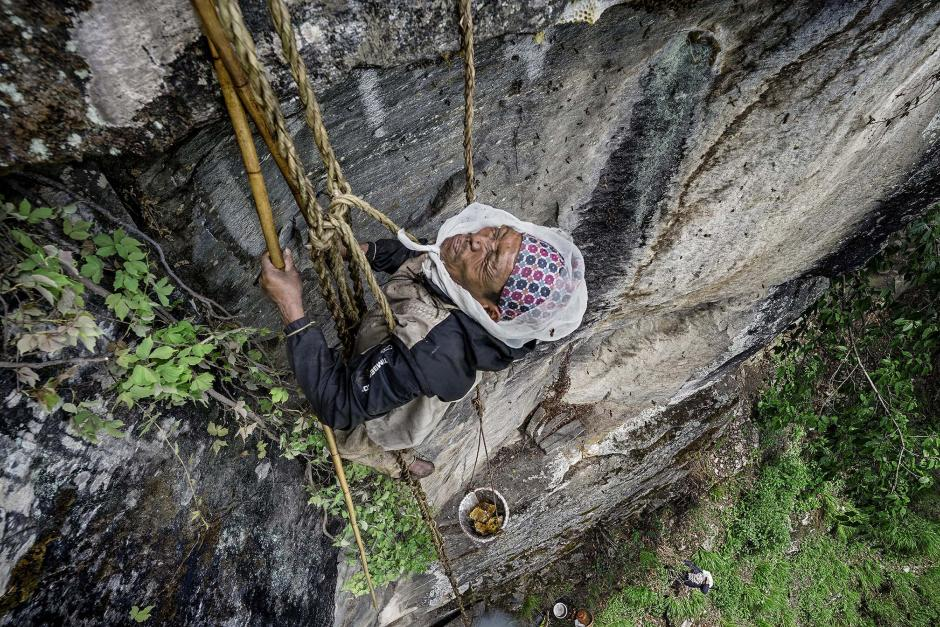 The Last Honey Hunter © Renan Ozturk