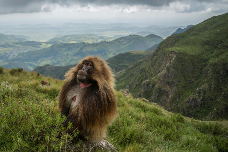 Banff Mountain Photo Essay Winner