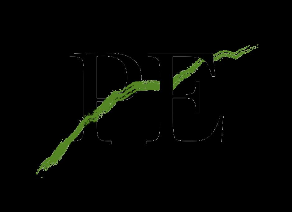 Pontiac Enchante Logo