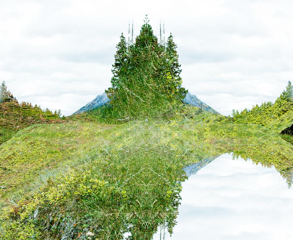 The Art of Stillness residency