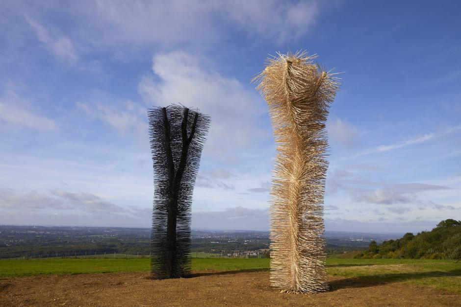 Ash to Ash by Ackroyd & Harvey, Commissioned though The Ash Project.