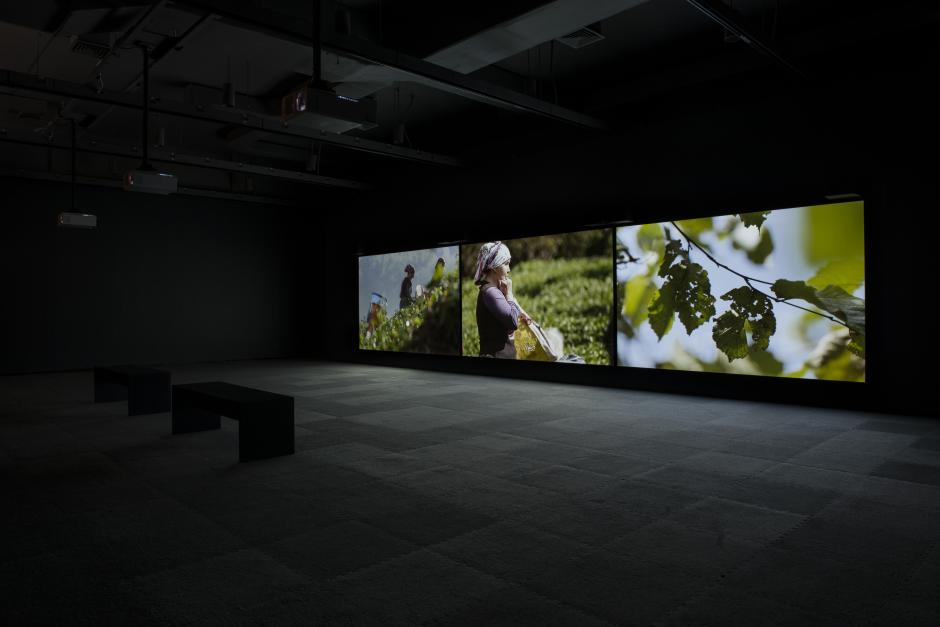 """Angelica Mesiti, installation view of """"The Calling"""". Walter Phillips Gallery, The Banff Centre. Photo Rita Taylor"""