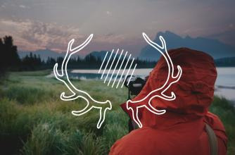 Antler icon with photographer background image