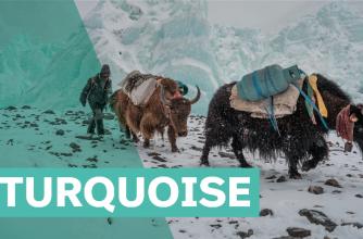 2020-21 Banff Mountain Film Festival World Tour Turquoise Program