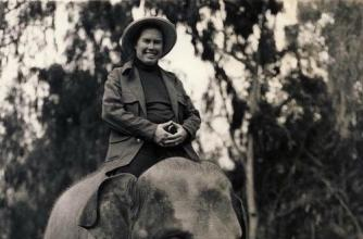 """""""The Wanderer"""" album cover for music by Pauline Oliveros shows a lady astride a small elephant."""