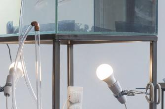 Two lightbulbs on clamps and a series of tubes run underneath a glass case.