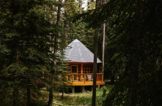 Wooden studio in the forest