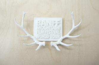 3D-printed mini-model of the award