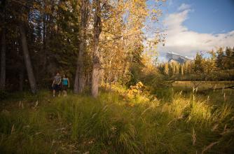 Hiking Fenlands Trail, Banff National Park.