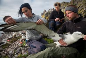 Image from the film namanu rruni | Albatross Island