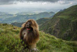 Banff Mountain Photo Essay Winner