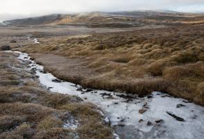 Arctic tundra with frozen stream