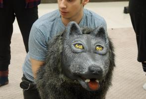 A very realistic wolf