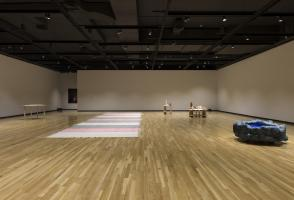 """Installation view of """"Be Mysterious"""" (2014). Walter Phillips Gallery, Banff Cantre. Photograph by Rita Taylor."""